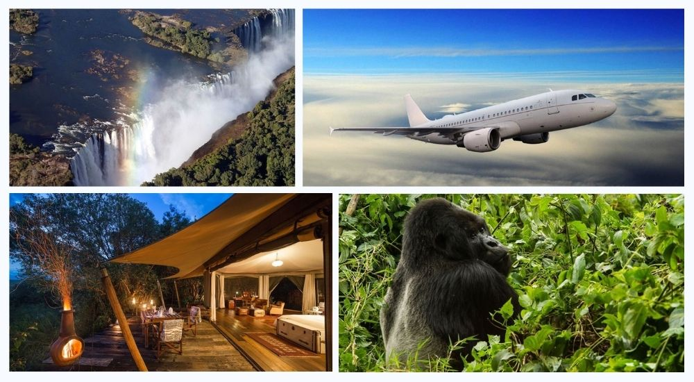 Carbon neutral, ROAR AFRICA Executive Jet Safari begins in August at $125,000 per person