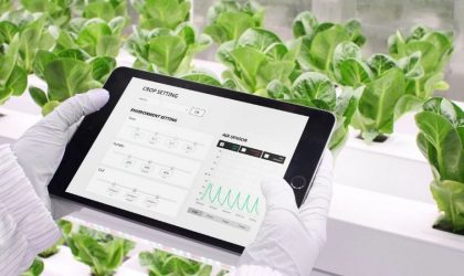 Seoul based N.THING participates at Gitex 2021 with hydroponic, vertical, smart farming
